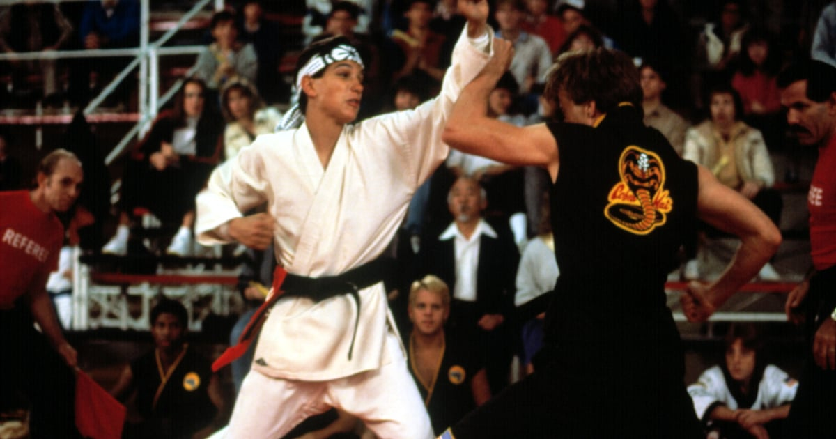 Looking For Movies Like The Karate Kid After Watching Cobra Kai? Here's What to Stream