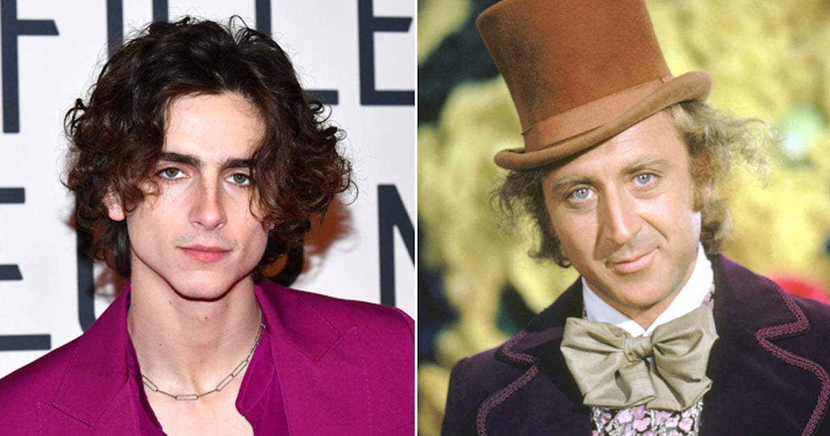 We Don't Need Another Willy Wonka Movie, but at Least Timothée Chalamet Is in the Next One