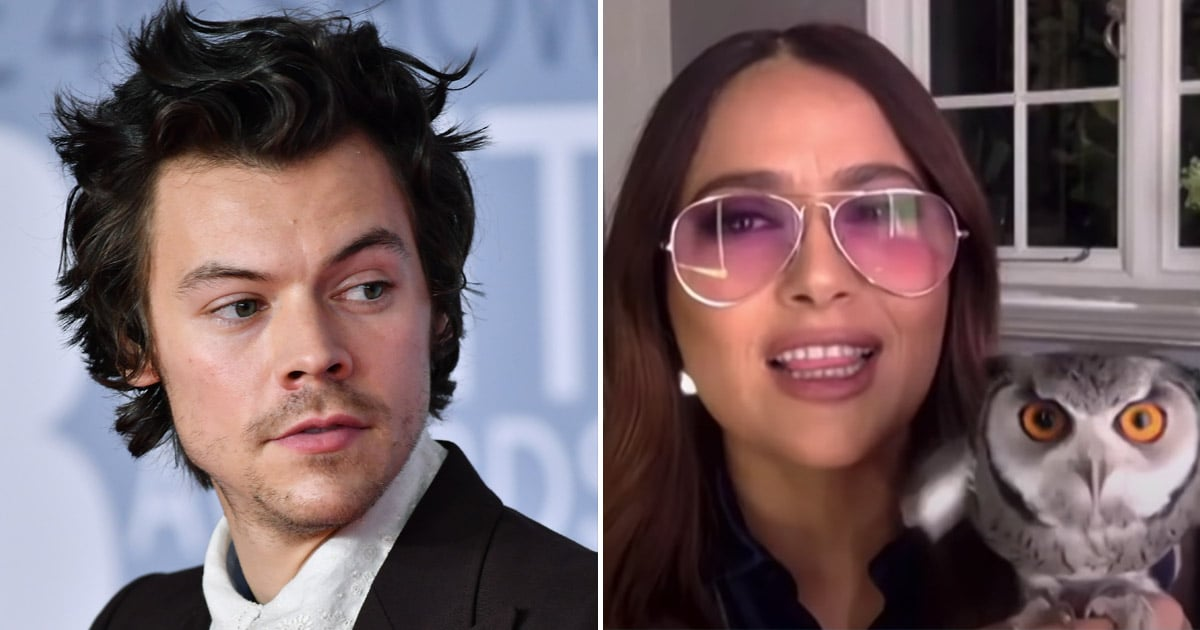 Salma Hayek's Pet Owl Adores Harry Styles So Much That the Bird Threw Up on Him